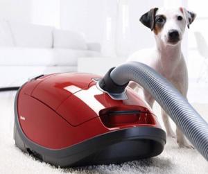 miele vacuum pic